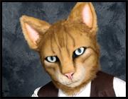 Cat: Tabby
